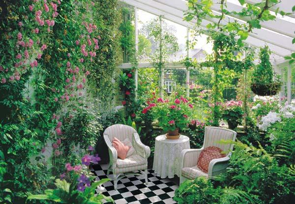 Оранжереи цветов в доме