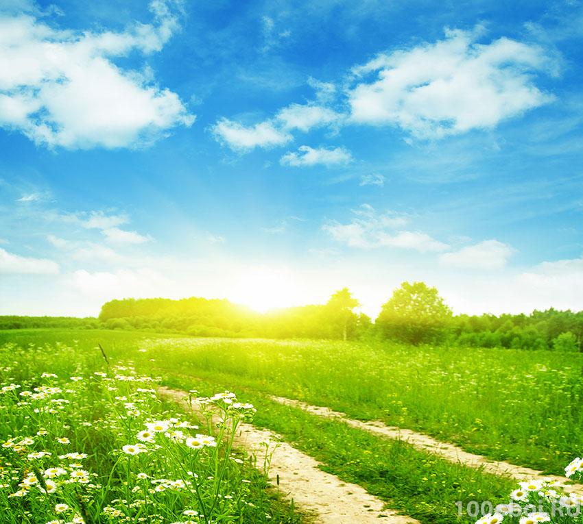 Картинка солнечного дня