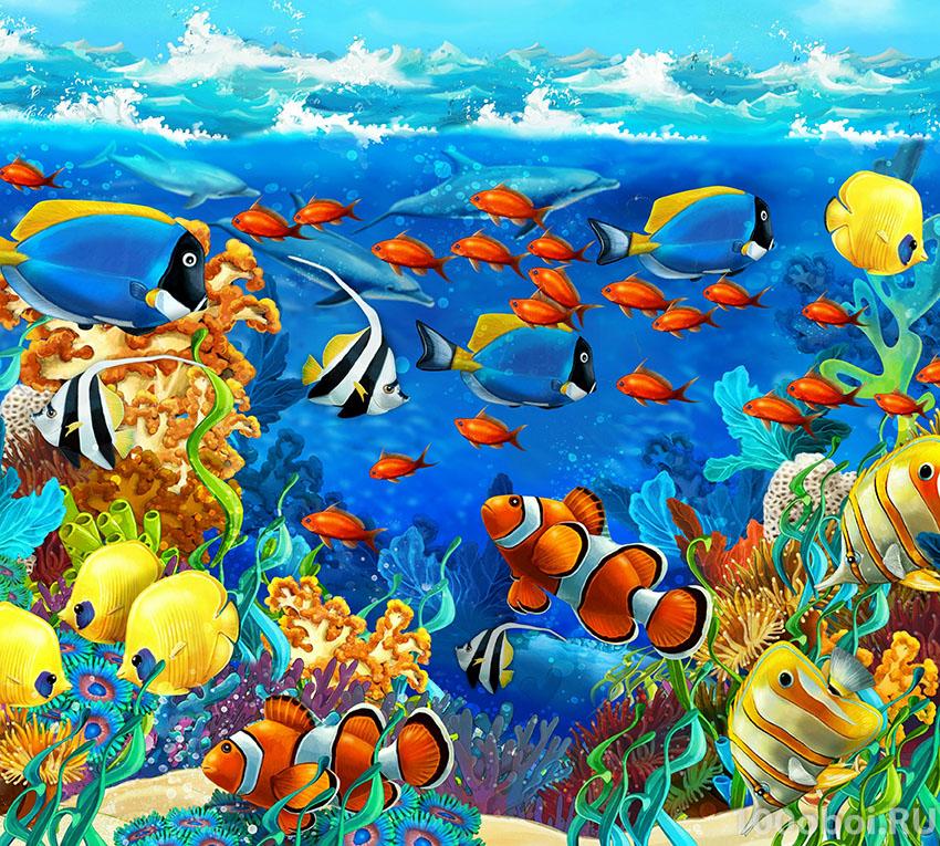 Яркие картинки подводного мира