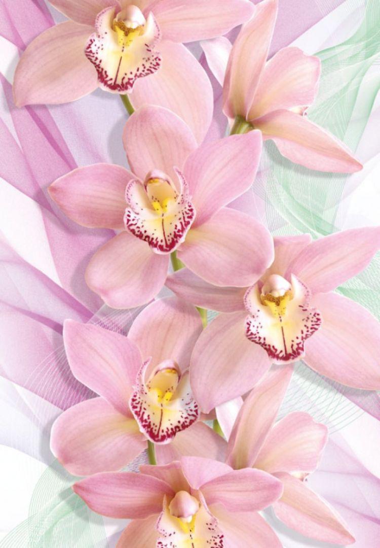 Вертикальные картинки цветы, молодец умница
