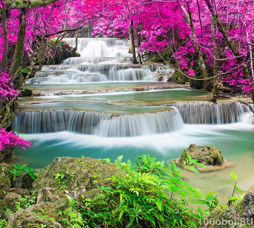 картинки на стену природа и цветы абхазии через