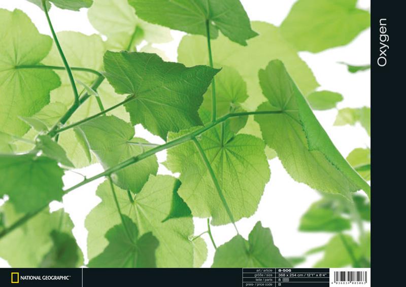 Фотообои на стену каталог komar 2011 стр