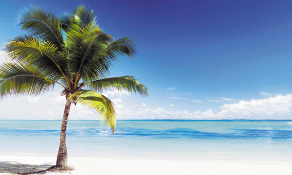 Пляжи Атлантического океана (фото, видео, описание) - HolaPlaya 37