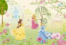 Детские фотообои на стену «Сад принцесс» Komar 1-417 Princess Garden
