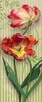 Фотообои на дверь «Цветы тюльпаны». Komar 2-1885 Swing