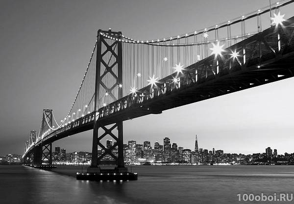 Фотообои на стену «Сан Франциско» WG 00134 San Francisco Skyline