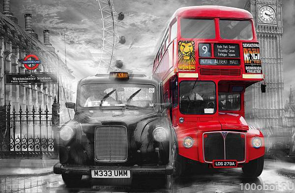 �������� �������� � ����Ȼ WG 00698 Taxi and Bus