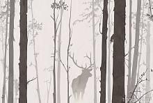 Фотообои Милан M-601 В лесу (200 x 135 см)